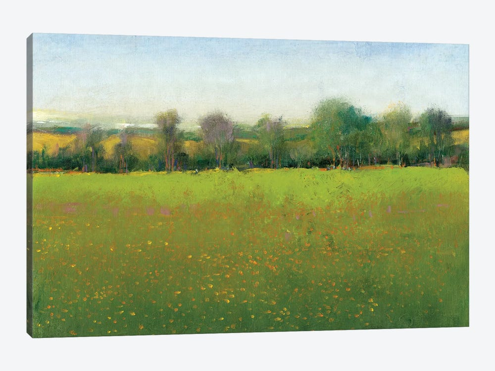 Verdant Countryside I by Tim OToole 1-piece Canvas Wall Art