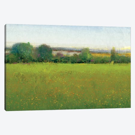 Verdant Countryside II Canvas Print #TOT176} by Tim OToole Canvas Art