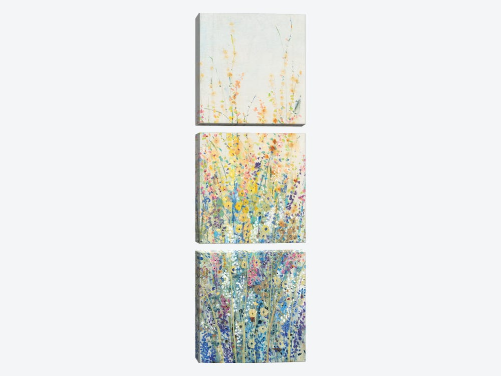 Wildflower Panel II by Tim O'Toole 3-piece Canvas Art Print