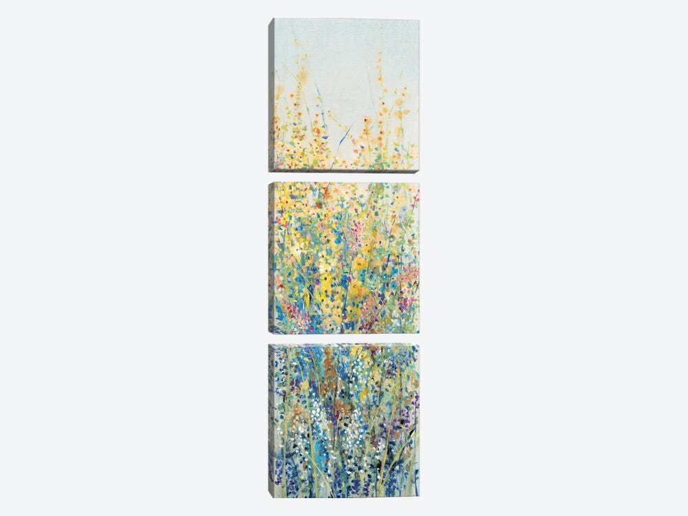 Wildflower Panel III by Tim O'Toole 3-piece Canvas Art