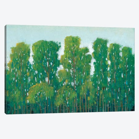 Forest Green I Canvas Print #TOT180} by Tim OToole Canvas Wall Art