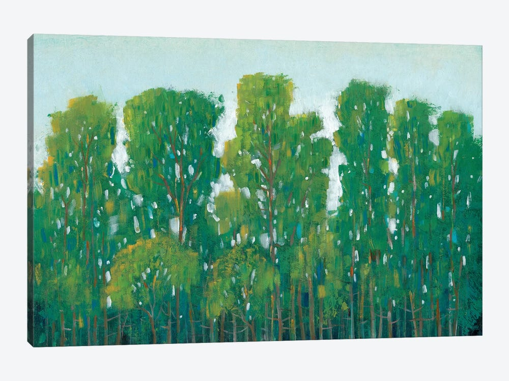 Forest Green I by Tim OToole 1-piece Canvas Art