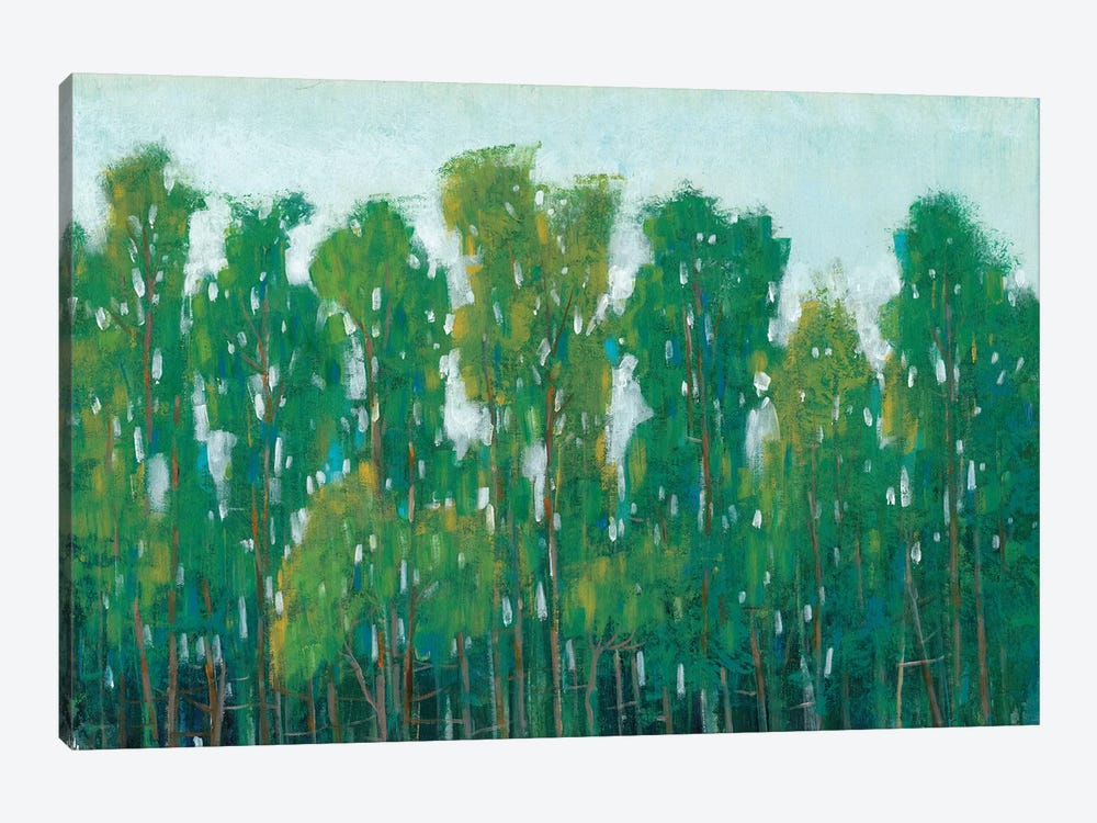 Forest Green II by Tim OToole 1-piece Canvas Art Print