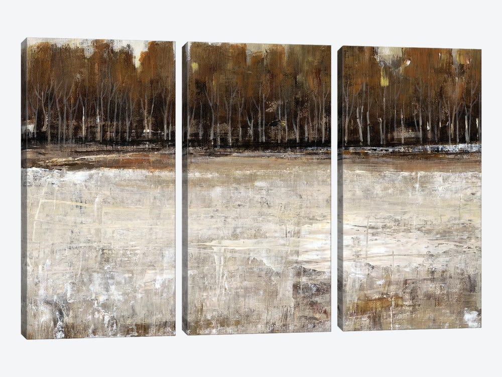 Neutral Reflection I by Tim OToole 3-piece Canvas Art