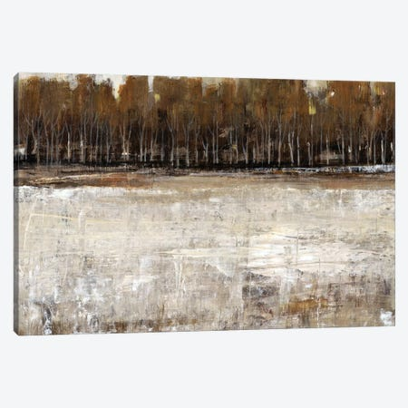 Neutral Reflection I Canvas Print #TOT182} by Tim OToole Canvas Wall Art