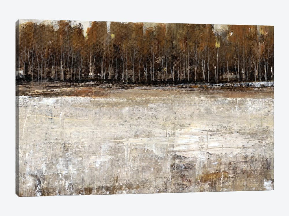 Neutral Reflection I by Tim OToole 1-piece Canvas Artwork