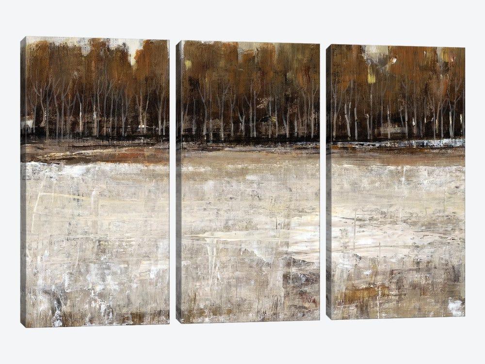 Neutral Reflection I by Tim OToole 3-piece Canvas Art