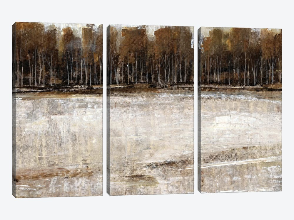 Neutral Reflection II by Tim OToole 3-piece Art Print