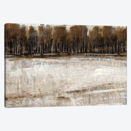Neutral Reflection II Canvas Print #TOT183} by Tim OToole Canvas Wall Art