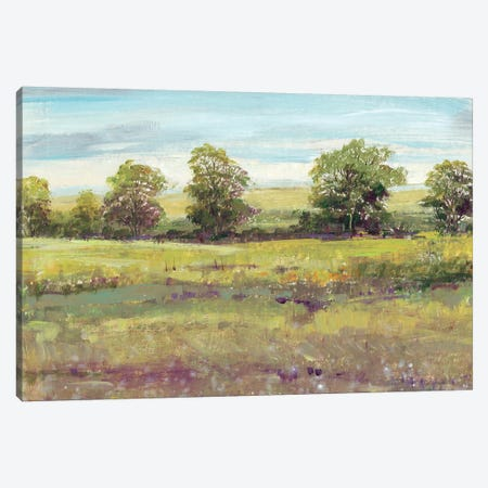 Abundant Spring I Canvas Print #TOT184} by Tim OToole Canvas Print