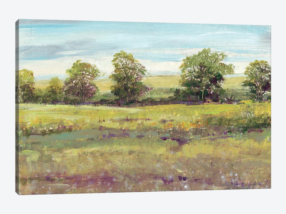 Abundant Spring I by Tim O'Toole 1-piece Canvas Wall Art
