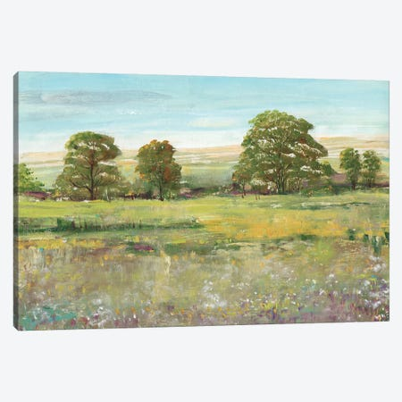 Abundant Spring II Canvas Print #TOT185} by Tim OToole Art Print
