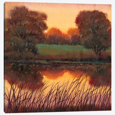 Early Evening I Canvas Print #TOT194} by Tim OToole Canvas Artwork