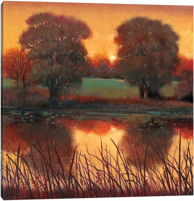 Early Evening II Canvas Art Print