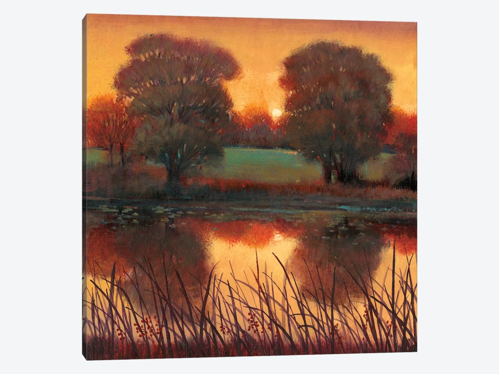 Early Evening II by Tim O'Toole 1-piece Canvas Artwork