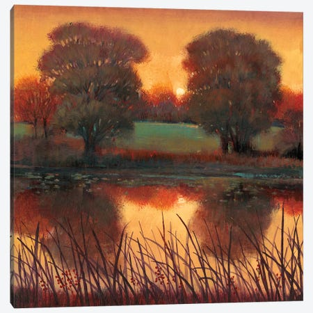 Early Evening II Canvas Print #TOT195} by Tim OToole Canvas Art
