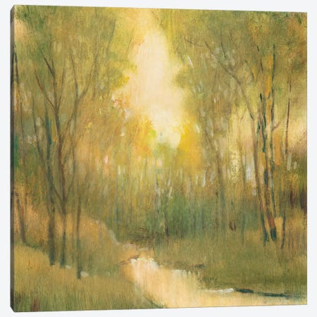 Forest Sanctuary I Canvas Print #TOT198} by Tim OToole Art Print