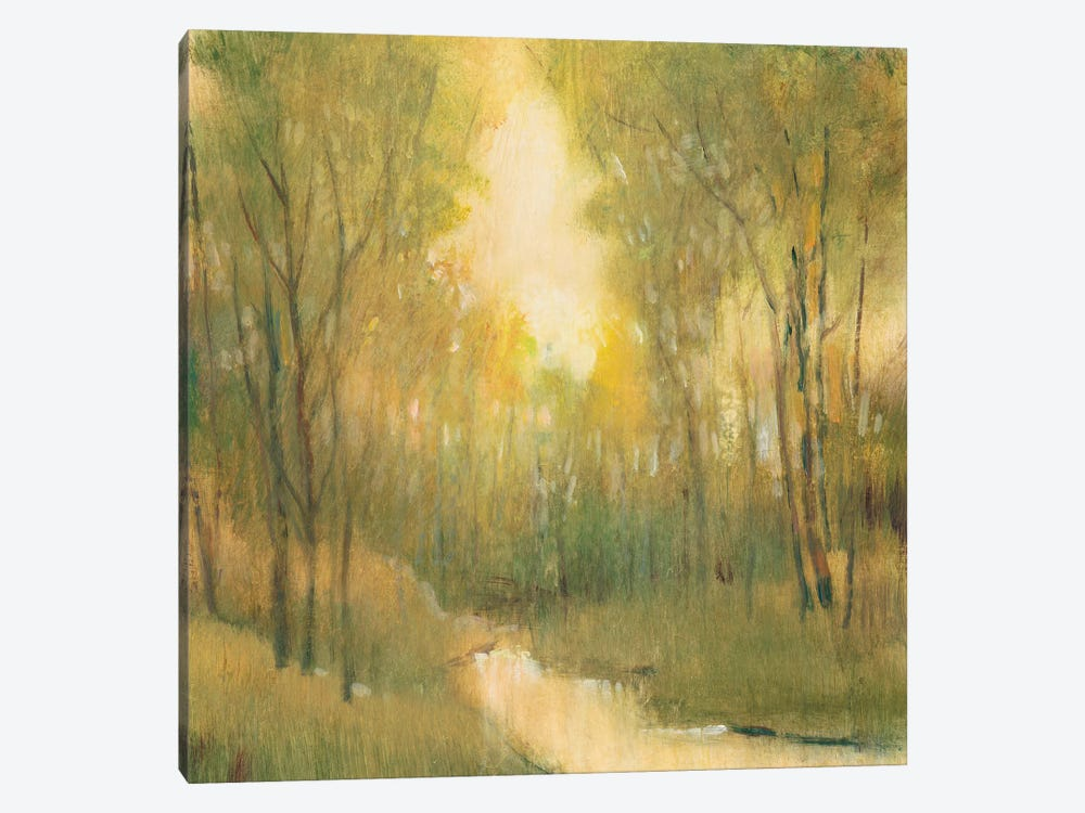 Forest Sanctuary I by Tim O'Toole 1-piece Canvas Art Print