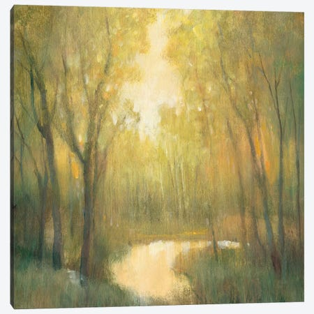 Forest Sanctuary II Canvas Print #TOT199} by Tim OToole Art Print