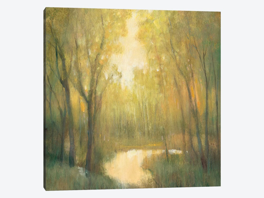Forest Sanctuary II by Tim O'Toole 1-piece Canvas Artwork