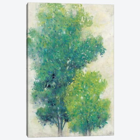 A Pair Of Trees I Canvas Print #TOT19} by Tim O'Toole Canvas Wall Art