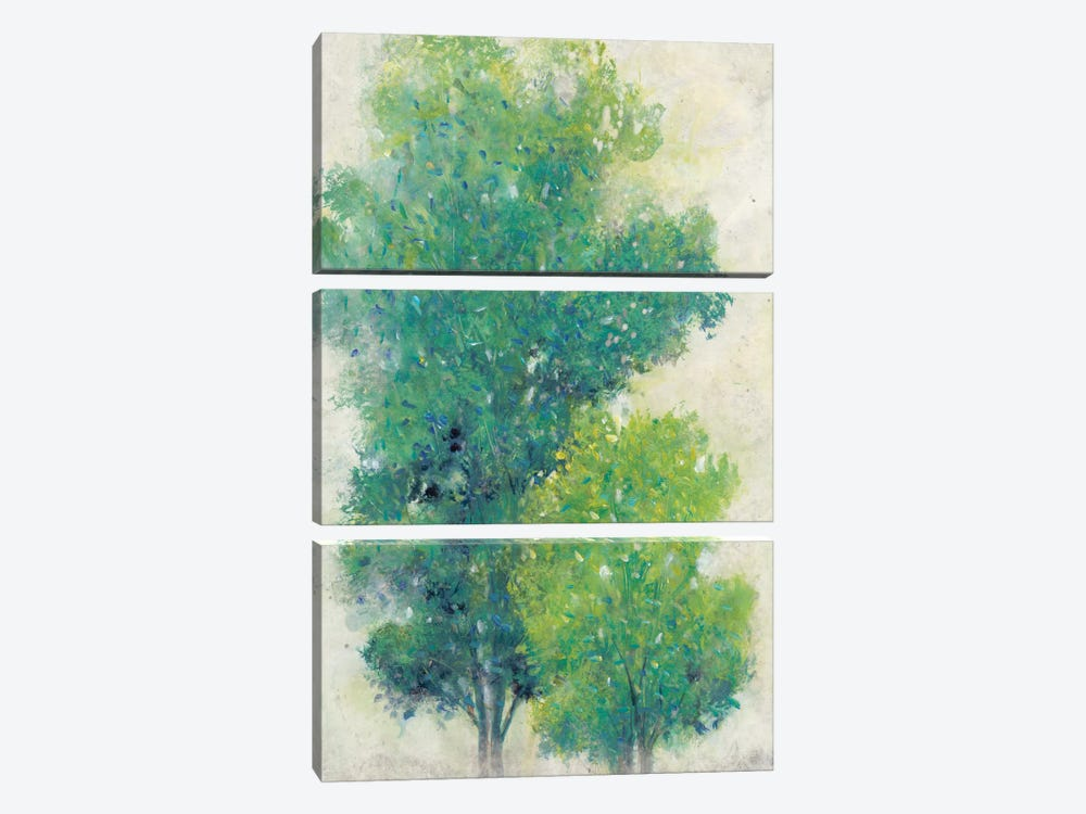 A Pair Of Trees I by Tim O'Toole 3-piece Canvas Art Print
