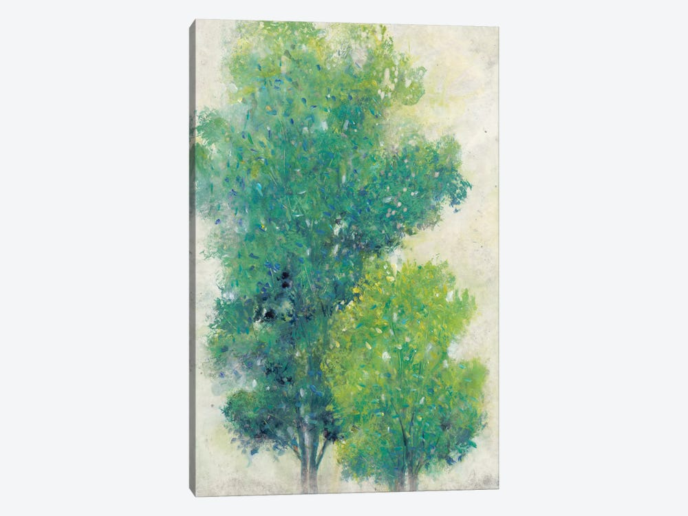 A Pair Of Trees I by Tim OToole 1-piece Canvas Print