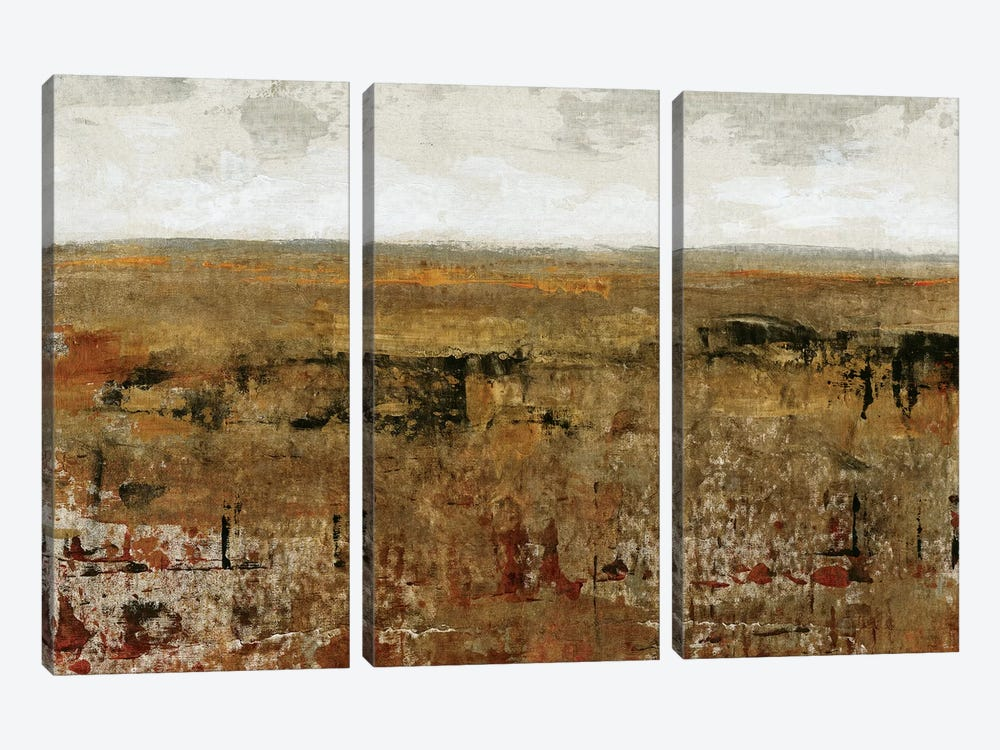 Afternoon Glow I by Tim O'Toole 3-piece Canvas Art