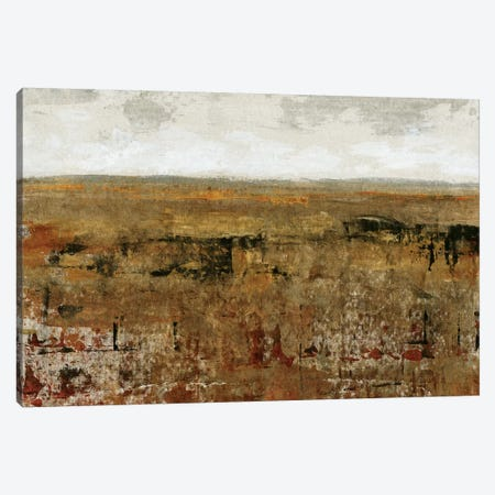 Afternoon Glow I Canvas Print #TOT1} by Tim OToole Art Print