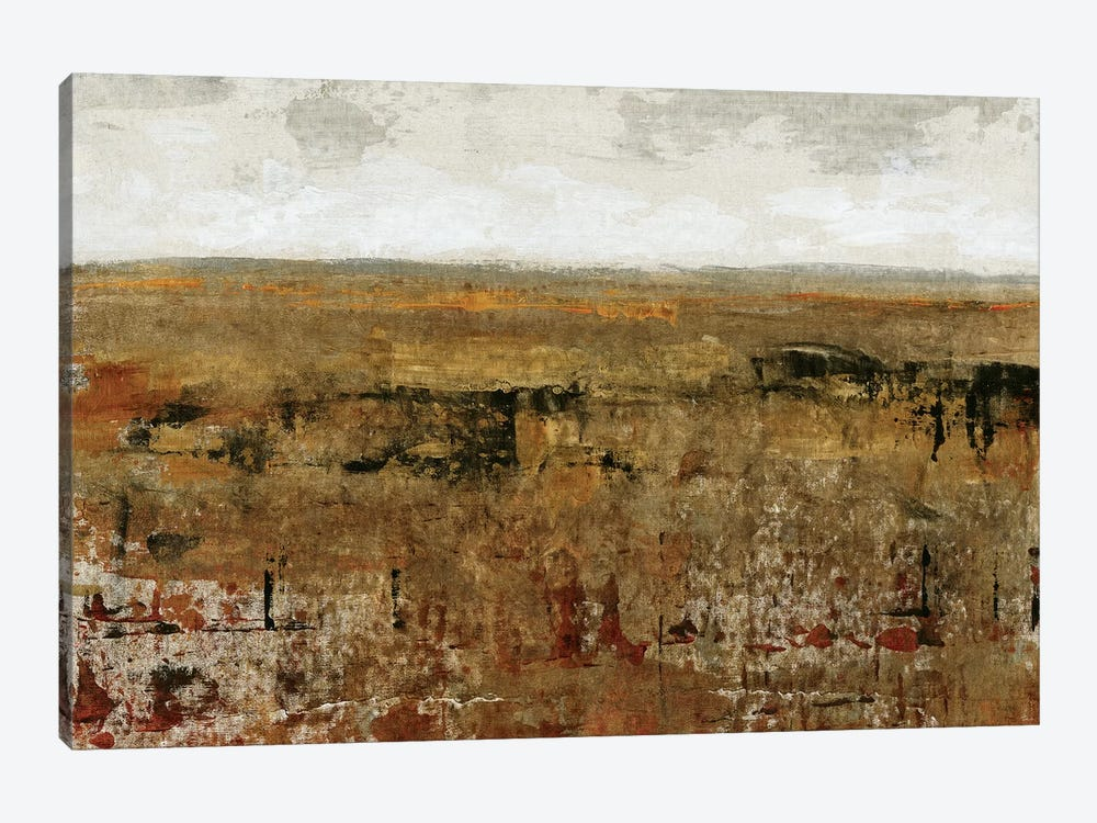 Afternoon Glow I by Tim OToole 1-piece Canvas Artwork