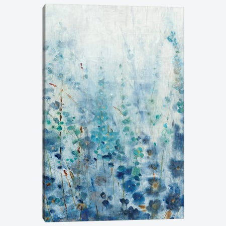 Misty Blooms I Canvas Print #TOT202} by Tim OToole Art Print