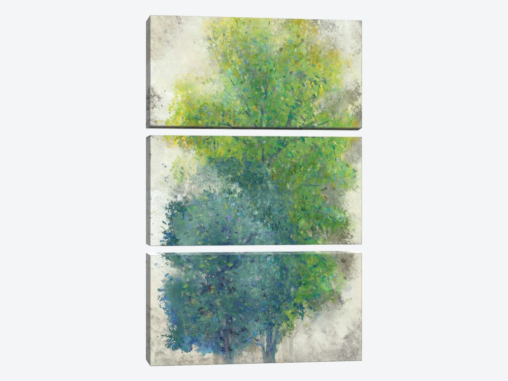 A Pair Of Trees II by Tim OToole 3-piece Canvas Art Print