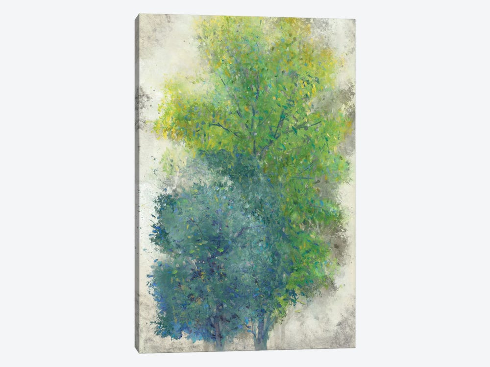 A Pair Of Trees II by Tim OToole 1-piece Canvas Print