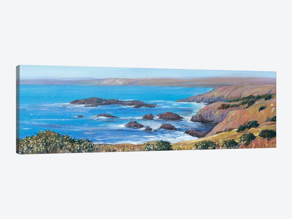 Panoramic Ocean View I by Tim OToole 1-piece Canvas Art Print