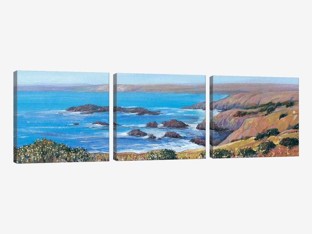 Panoramic Ocean View I by Tim O'Toole 3-piece Canvas Art Print