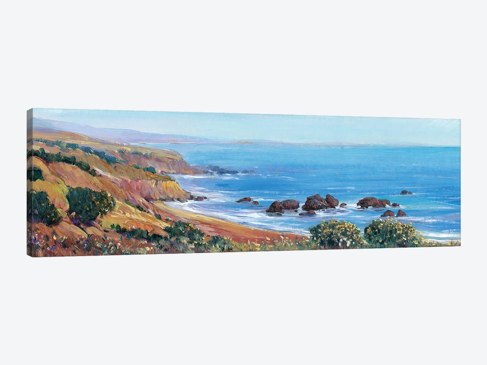 Panoramic Ocean View II by Tim O'Toole 1-piece Canvas Art