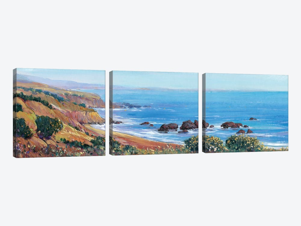 Panoramic Ocean View II by Tim O'Toole 3-piece Canvas Wall Art