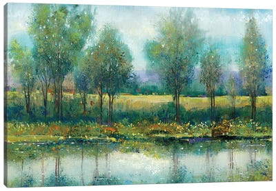 River Reflection II Canvas Art Print