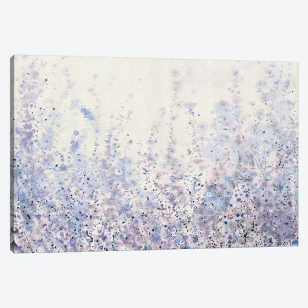 Soft Focus I Canvas Print #TOT220} by Tim OToole Canvas Art Print