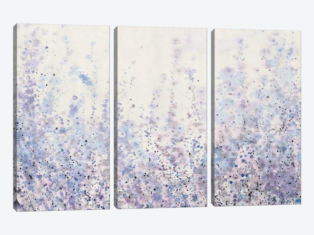 Soft Focus I by Tim OToole 3-piece Canvas Art