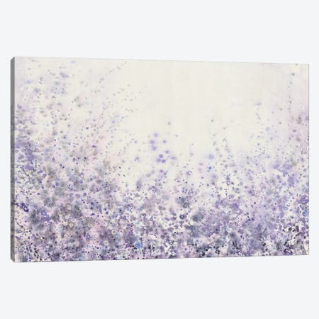 Soft Focus II Canvas Print #TOT221} by Tim O'Toole Canvas Print