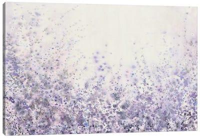 Soft Focus II Canvas Art Print