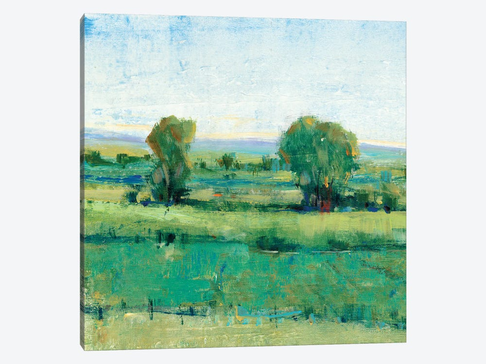 Spring Meadow I by Tim OToole 1-piece Canvas Art