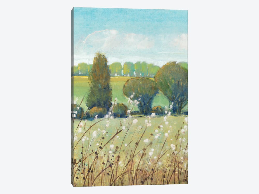 Summer Breeze I by Tim O'Toole 1-piece Canvas Art