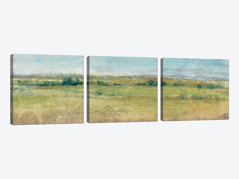 Summer Haze I by Tim OToole 3-piece Canvas Print