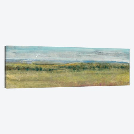 Summer Haze II Canvas Print #TOT231} by Tim O'Toole Canvas Art