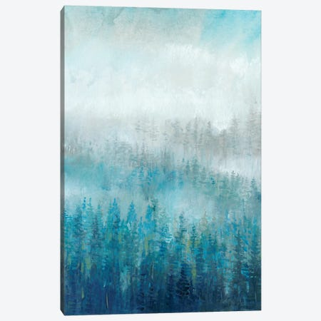 Above The Mist I Canvas Print #TOT234} by Tim OToole Canvas Print