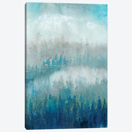 Above The Mist II Canvas Print #TOT235} by Tim O'Toole Art Print