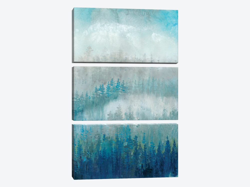 Above The Mist II by Tim OToole 3-piece Canvas Artwork