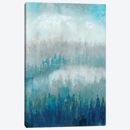 Above The Mist II Canvas Print #TOT235} by Tim OToole Art Print